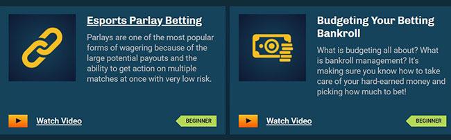 esports betting academy
